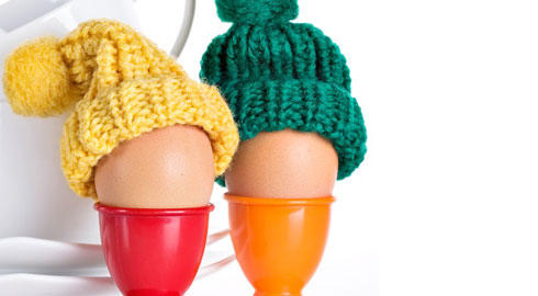 105421054 The Innocent Big Knit knitting competition   Hotcourses