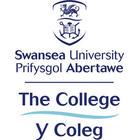 The College, Swansea University